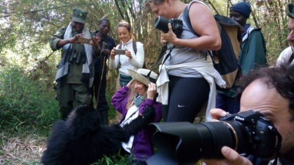 10 days wildlife & gorilla trekking safari in Uganda
