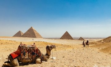 14 Days Egypt Comprehensive Desert Tour