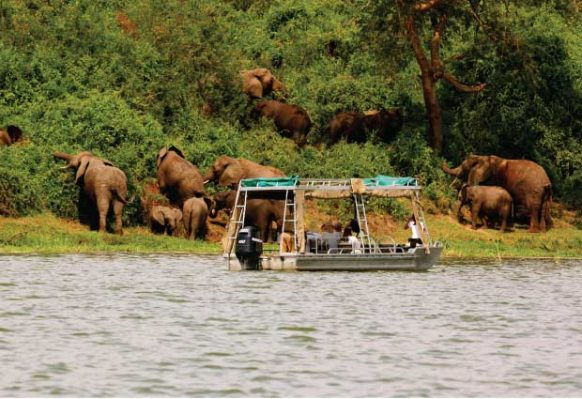Boat cruise in Lake Mburo National Park in Uganda