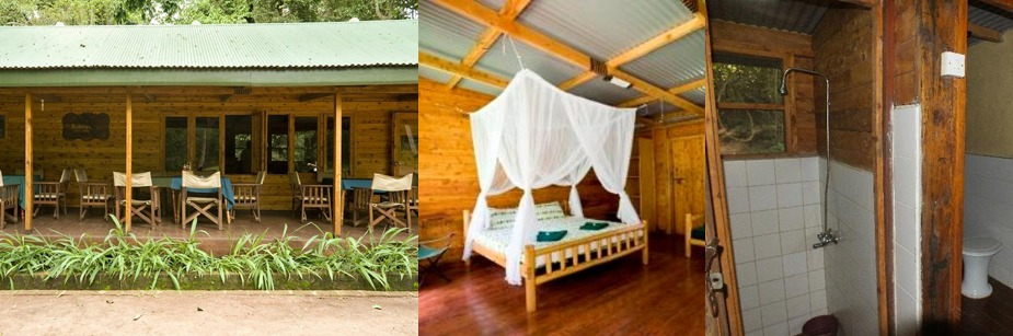 Budongo Eco Lodge- accommodation on a uganda safari