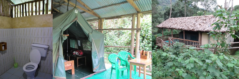 Buhoma Community Rest Camp-safari lodge in bwindi