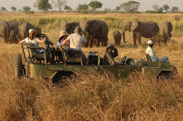 3 days Uganda safaris