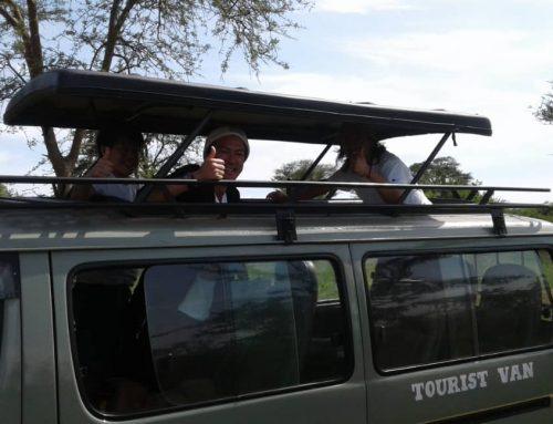 How to Stay Safe During Uganda Safari Tours – Uganda Safari News