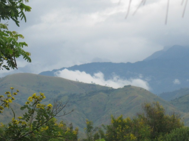 Rwenzori snow capped mountains