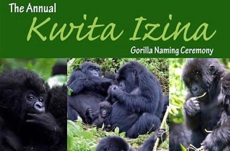 Kwita-Izina ceremony