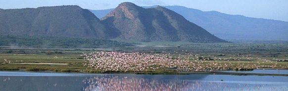Lake-Elementaita kenya safari