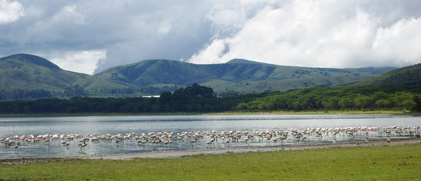 Lake Naivasha-kenya-tours