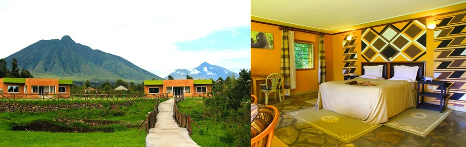 Mountain Gorilla View Lodge
