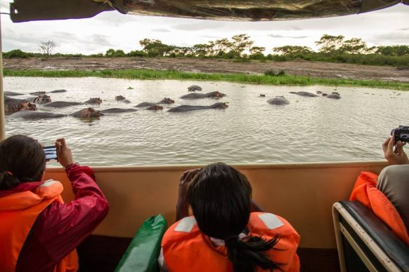 A Boat cruise at Queen Elizabeth National Park