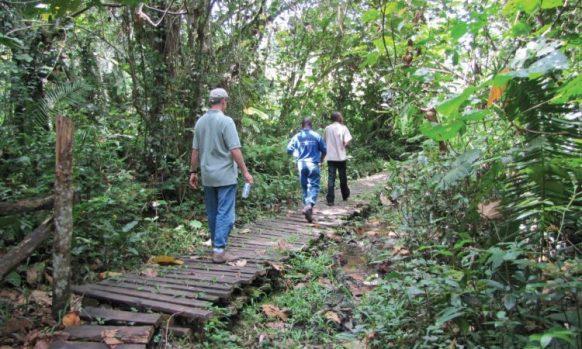 Rubanga Forest