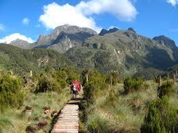 nature walk in Rwenzori