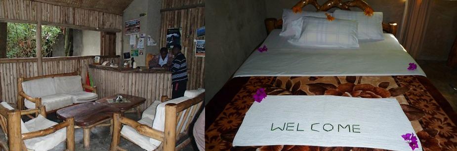 Wagtail Eco safari camp-safari lodge in kisoro