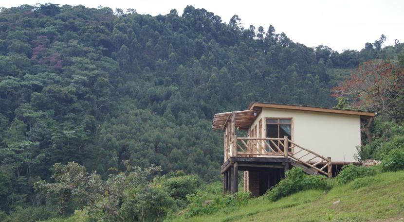 buhoma haven camp - uganda