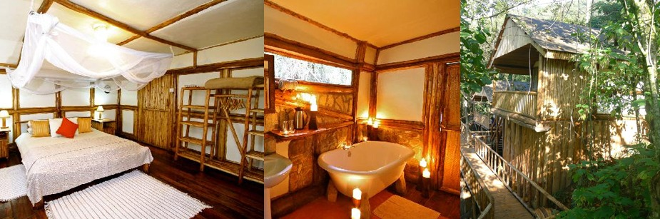 buhoma safari lodge- accommodation in bwindi np