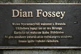 diana fossey-Rwanda
