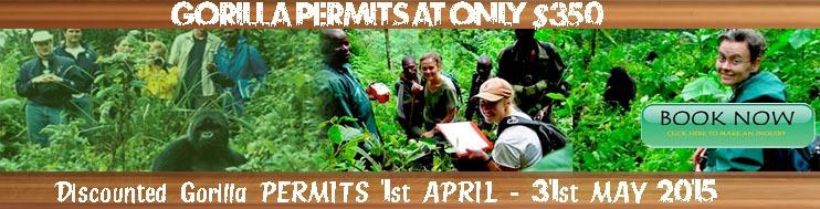 discount permits gorilla trekking