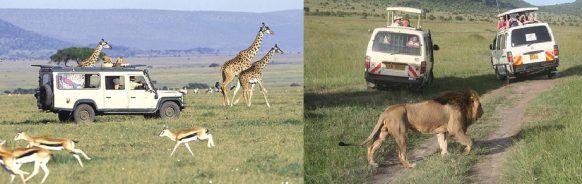 game drive kenya safari
