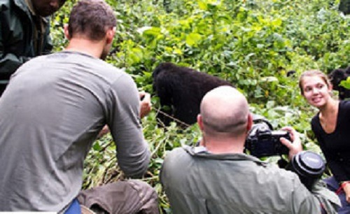 8 days Uganda gorilla trekking safari Bwindi & wildlife tour in Rwanda