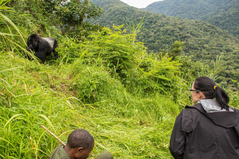 9 days Uganda wildlife safari Murchison Falls