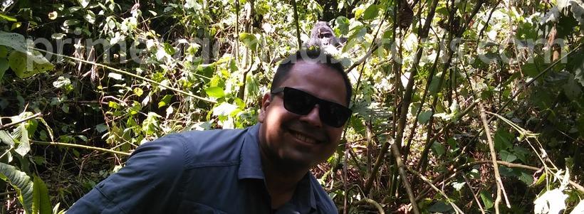 gorilla-trekking-in-bwindi