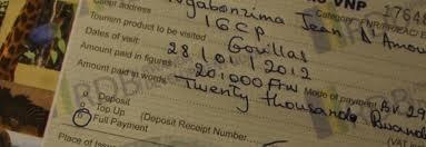Gorilla Permits to Bwindi