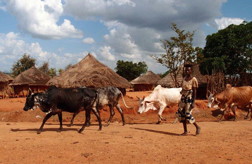 karamoja - uganda