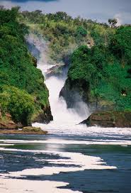 murchision falls