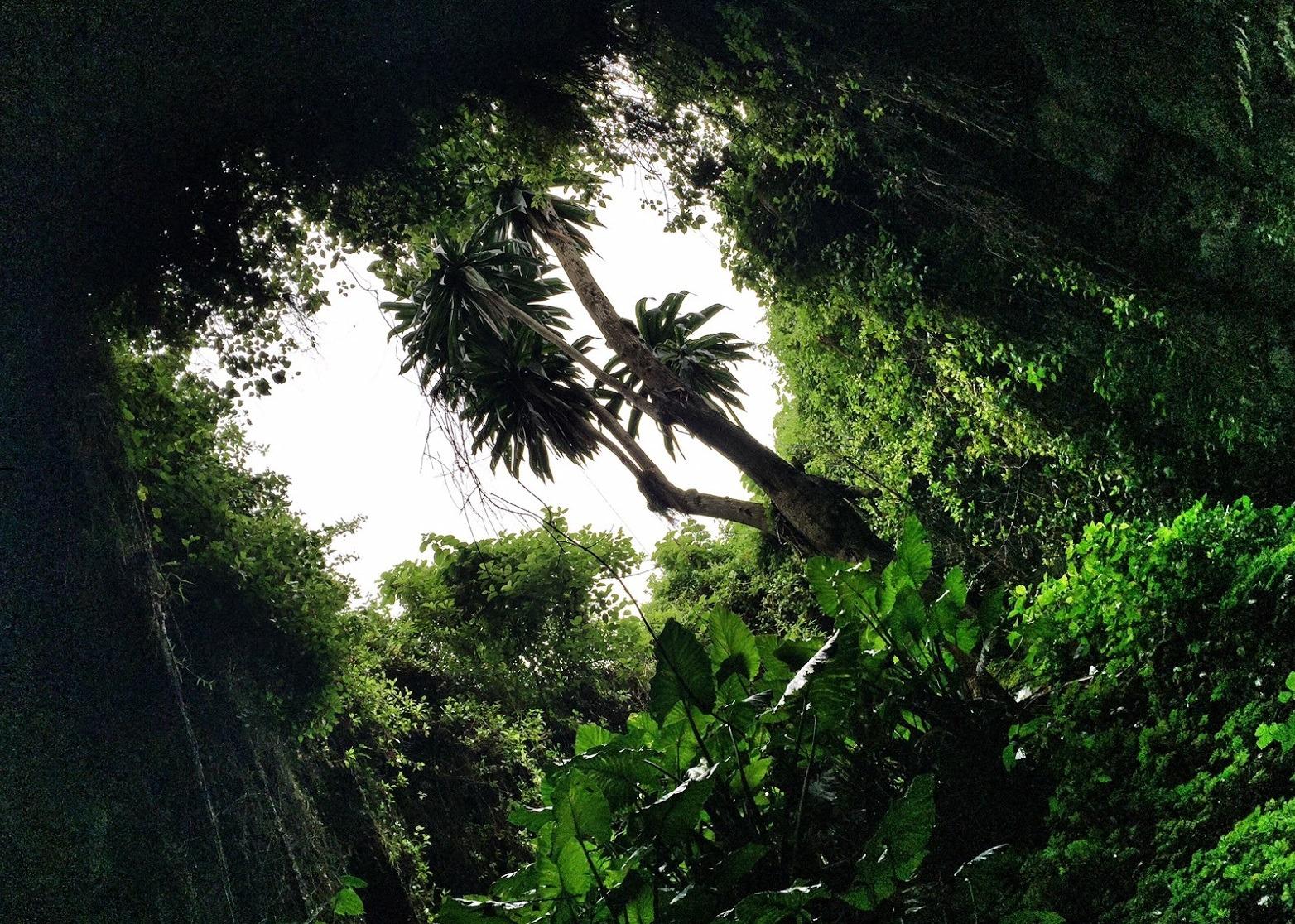 musanze caves -rwanda