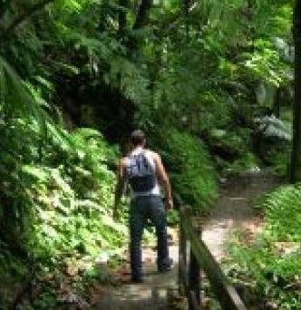 nature walks in uganda
