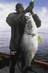 Spot fishing in uganda