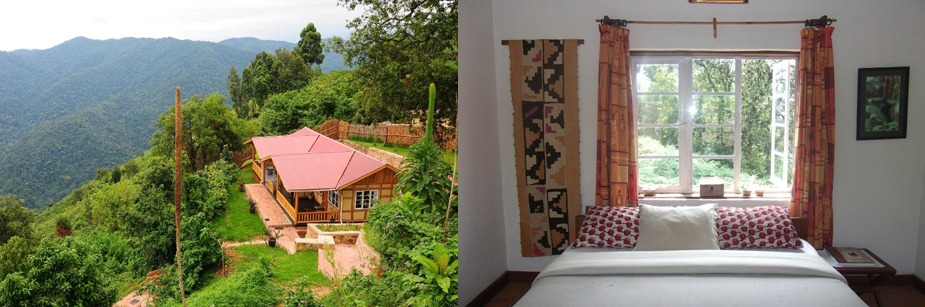 nkuringo gorilla camp-accommodation in bwindi