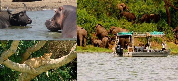 queen-elizabeth- big-five-uganda safari