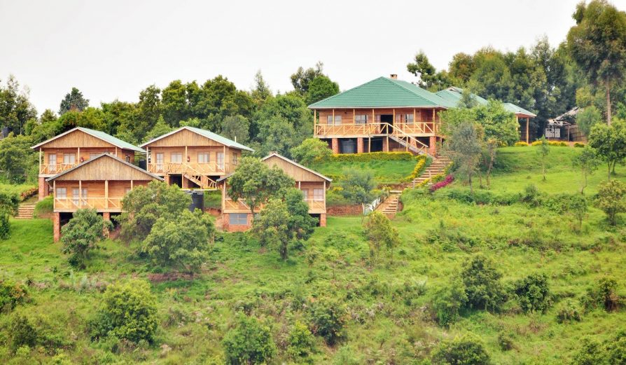 ruhija safari lodge