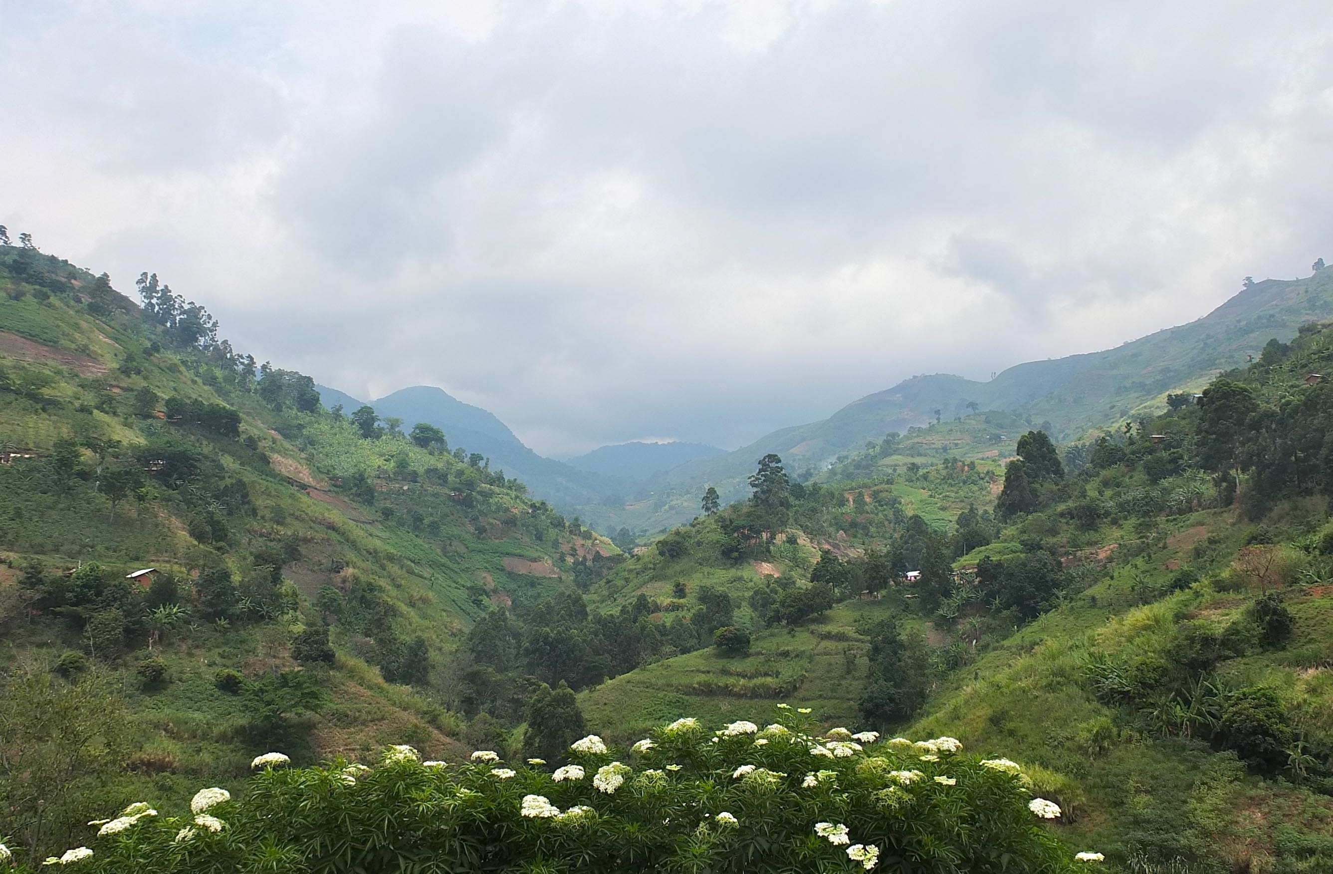 rwanda -safaris