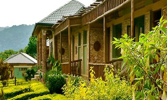 silver-back-lodge-bwindi