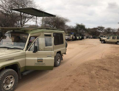 Hiring a car eases your Rwanda or Uganda  safari