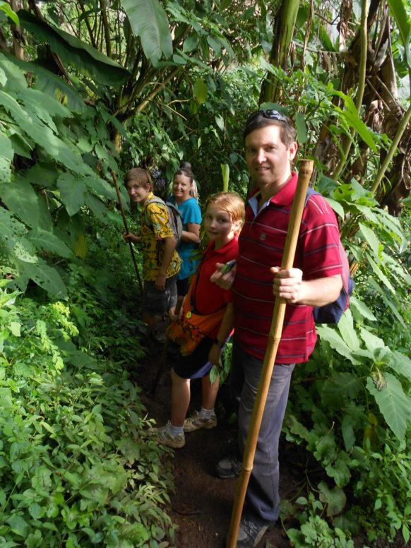 Group Gorilla Safari