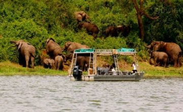9 Days Uganda Safari, Uganda tours