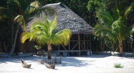 Ankanin'ny Nofy Madagascar safari Tours package