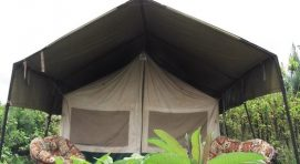 BROADBILL FOREST CAMP - KABALE