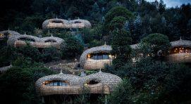 13 days Uganda Rwanda Safari
