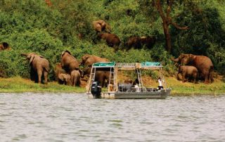 Boat cruise in Lake Mburo National Park Uganda tour
