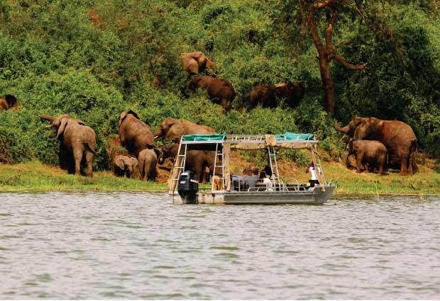 Boat cruise in Lake Mburo National Park in Uganda - Prime Uganda Safaris &  Tours