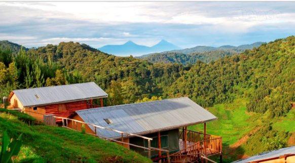 Bwindi Bakiga Lodge