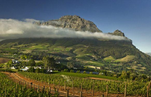 Cape Winelands South Africa Safari Tours