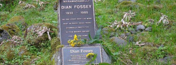 Diane fossey grave Active Adventure Vacation Safari in Rwanda