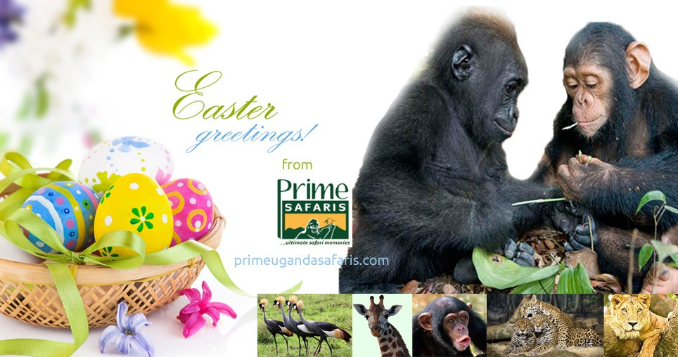 Easter Greetings From Prime Uganda Safaris with smiles