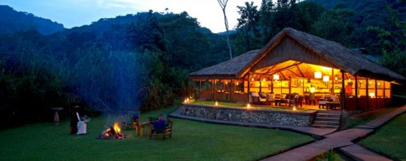 Gorilla Forest Camp Bwindi
