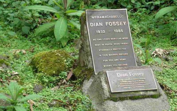 Hiking the Dian Fossey Grave rwanda safari