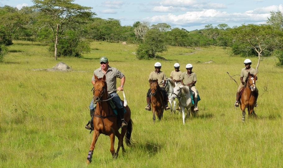 7 days Uganda gorilla trekking safari Bwindi, wildlife tour & chimpanzee trekking kibale